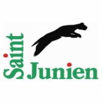 saint-junien.jpg
